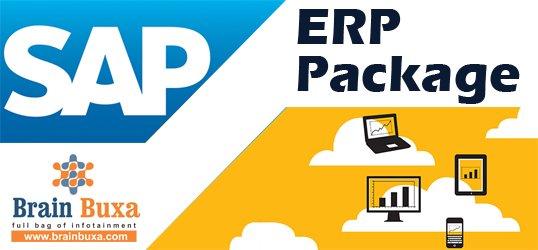 SAP ERP Package