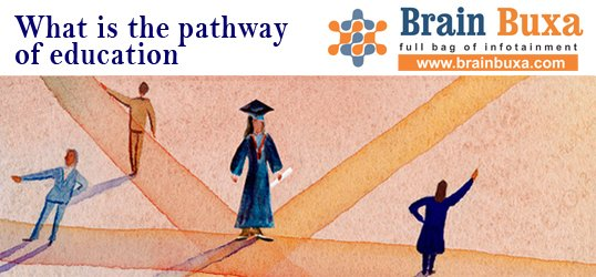What is the pathway of education