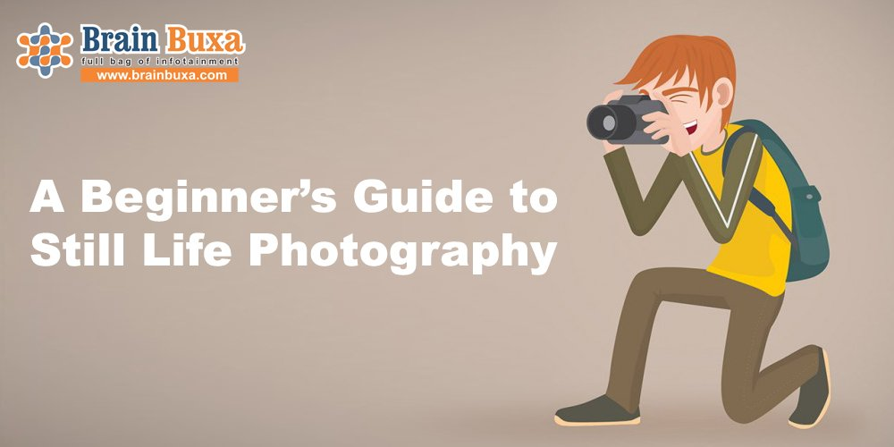 A Beginner's Guide to Still Life Photography