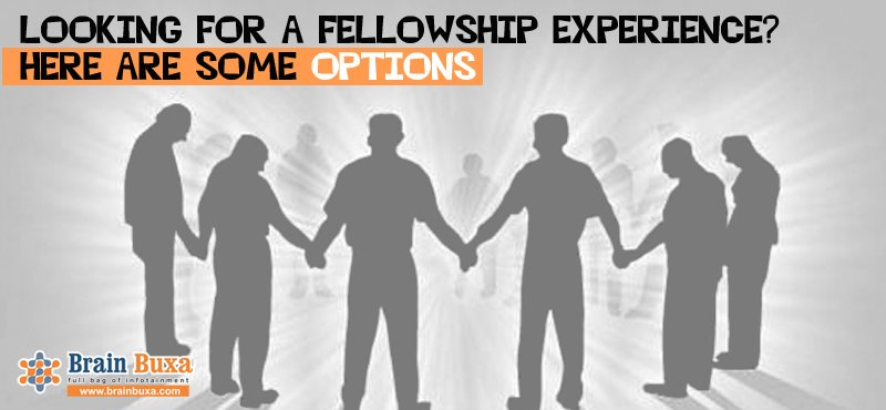 Looking for a fellowship experience? Here are some options