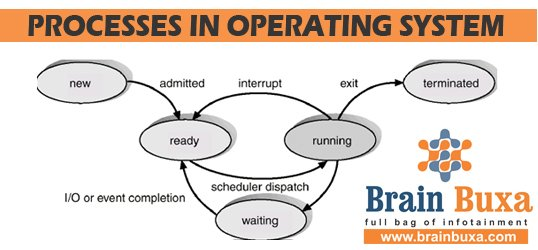 Processes in Operating System