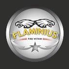 FLAMINIUS 15 logo