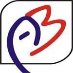 ABINITIO 2013 logo
