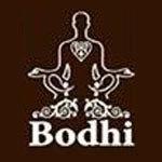 BODHI 2013 logo