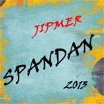 SPANDAN 2013 logo