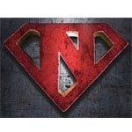 Neev 2013 logo