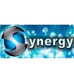 Synergy 2014 logo