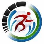 BOSM 2013 logo